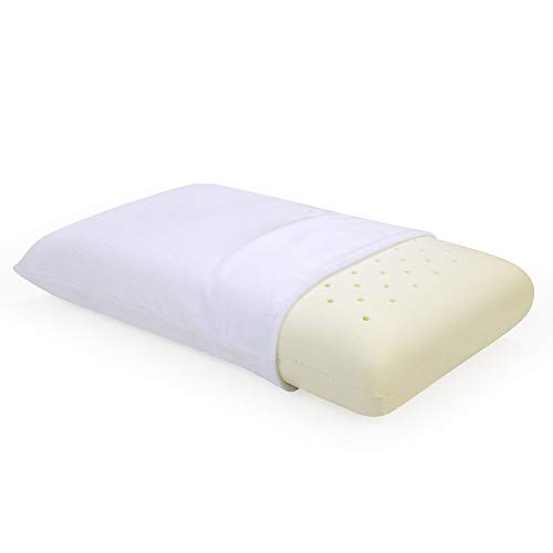 Classic Brands Ventilated Memory Foam Bed Pillow,...