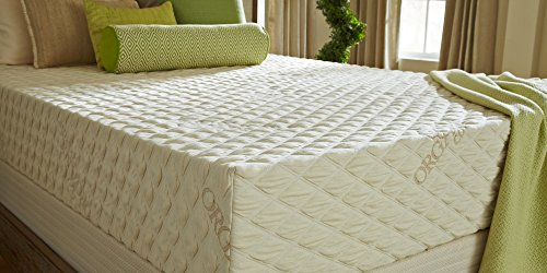 PlushBeds 10' Medium Firm Natural Bliss Latex Mattress,...