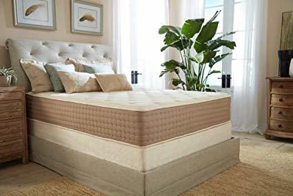 Eco Terra 11' Luxury Latex- Mattress for Scoliosis.