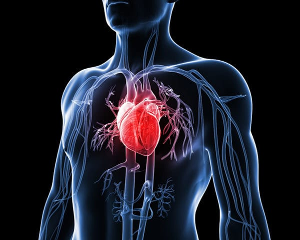 Cardiovasular Disorder-Delayed Sleep Phase Syndrome